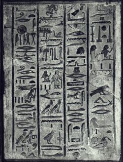 Fragmento de piedra caliza de 55x40.5 cm, catalogado como A8. Museo Calvet de Avignon