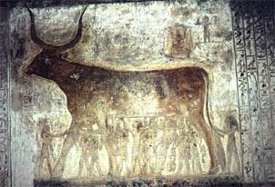 Fotografía actual de la pared. Pincha sobre la imagen para ampliarla